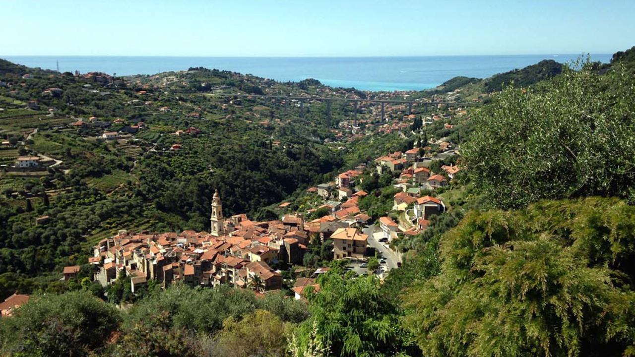 vallebona-panoramica